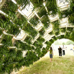 living-pavilion-inside-planted-milk-crates-tn