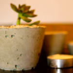 diy-concrete-mini-pots-with-succulents
